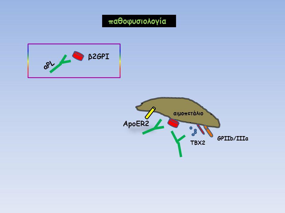 ApoER2 αιμοπετάλιο GPIIb/IIIa TBX2 παθοφυσιολογία β2GPI aPL