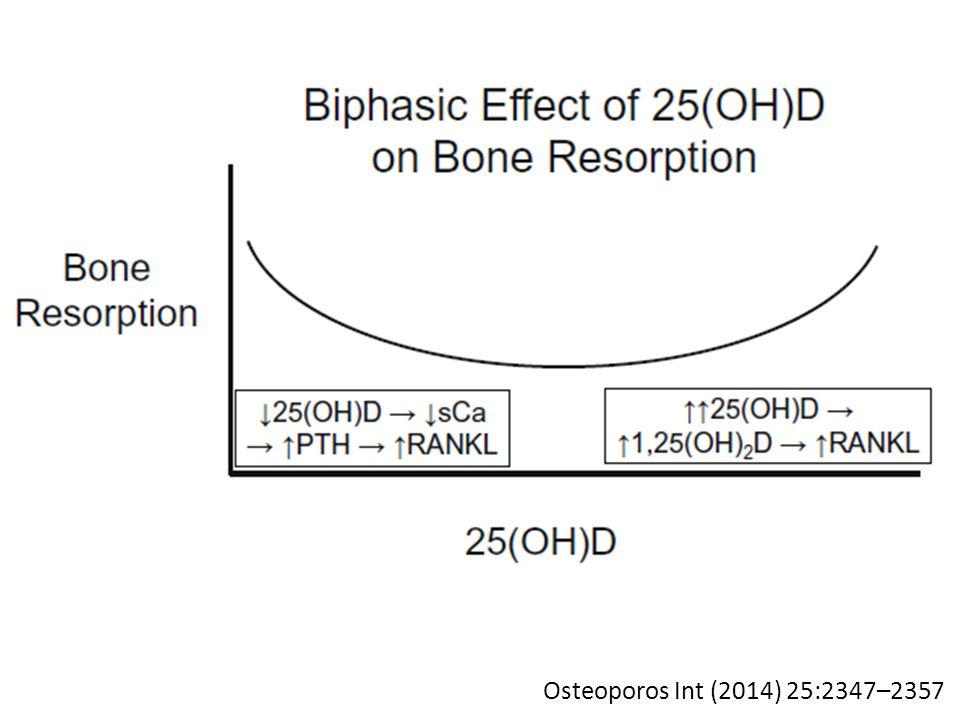 Osteoporos Int (2014) 25:2347–2357