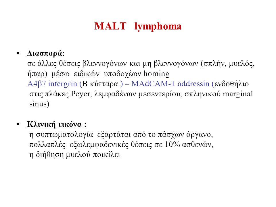 MALT lymphoma Διασπορά: σε άλλες θέσεις βλεννογόνων και μη βλεννογόνων (σπλήν, μυελός, ήπαρ) μέσω ειδικών υποδοχέων homing Α4β7 intergrin (Β κύτταρα ) – MAdCAM-1 addressin (ενδοθήλιο στις πλάκες Peyer, λεμφαδένων μεσεντερίου, σπληνικού marginal sinus) Κλινική εικόνα : η συπτωματολογία εξαρτάται από το πάσχων όργανο, πολλαπλές εξωλεμφαδενικές θέσεις σε 10% ασθενών, η διήθηση μυελού ποικίλει