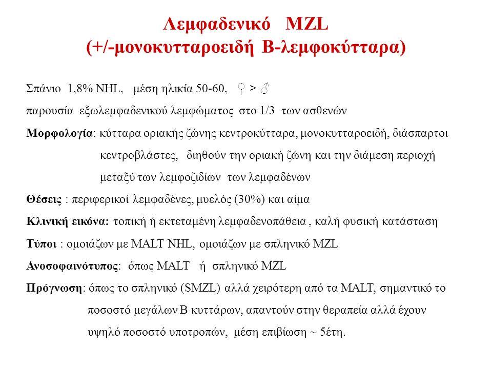 Λεμφαδενικό MZL (+/-μονοκυτταροειδή Β-λεμφοκύτταρα) Σπάνιο 1,8% NHL, μέση ηλικία 50-60, ♀ > ♂ παρουσία εξωλεμφαδενικού λεμφώματος στο 1/3 των ασθενών Μορφολογία: κύτταρα οριακής ζώνης κεντροκύτταρα, μονοκυτταροειδή, διάσπαρτοι κεντροβλάστες, διηθούν την οριακή ζώνη και την διάμεση περιοχή μεταξύ των λεμφοζιδίων των λεμφαδένων Θέσεις : περιφερικοί λεμφαδένες, μυελός (30%) και αίμα Κλινική εικόνα: τοπική ή εκτεταμένη λεμφαδενοπάθεια, καλή φυσική κατάσταση Τύποι : ομοιάζων με MALT NHL, ομοιάζων με σπληνικό MZL Ανοσοφαινότυπος: όπως MALT ή σπληνικό MZL Πρόγνωση: όπως το σπληνικό (SMZL) αλλά χειρότερη από τα MALT, σημαντικό το ποσοστό μεγάλων Β κυττάρων, απαντούν στην θεραπεία αλλά έχουν υψηλό ποσοστό υποτροπών, μέση επιβίωση ~ 5έτη.