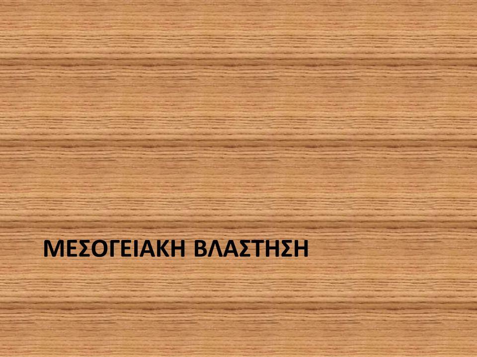 ΜΕΣΟΓΕΙΑΚΗ ΒΛΑΣΤΗΣΗ