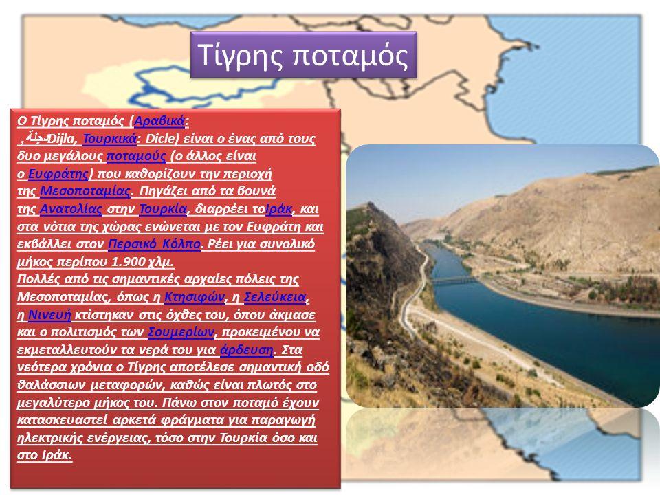 Ο Τίγρης ποταμός (Αραβικά: دجلة, Dijla, Τουρκικά: Dicle) είναι ο ένας από τους δυο μεγάλους ποταμούς (ο άλλος είναι ο Ευφράτης) που καθορίζουν την περιοχή της Μεσοποταμίας.