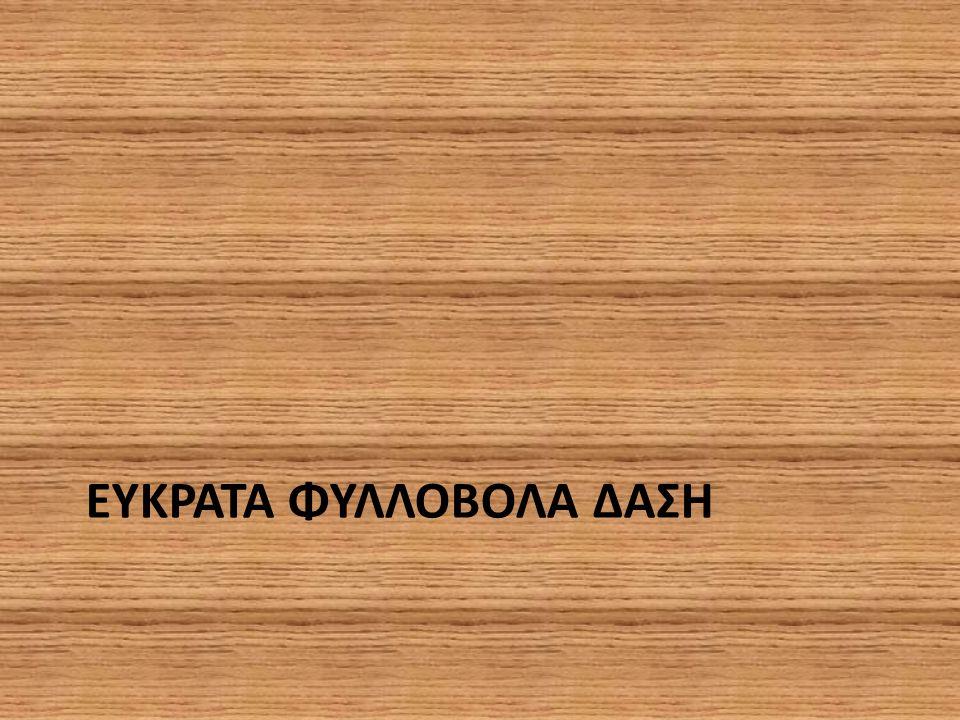 ΕΥΚΡΑΤΑ ΦΥΛΛΟΒΟΛΑ ΔΑΣΗ