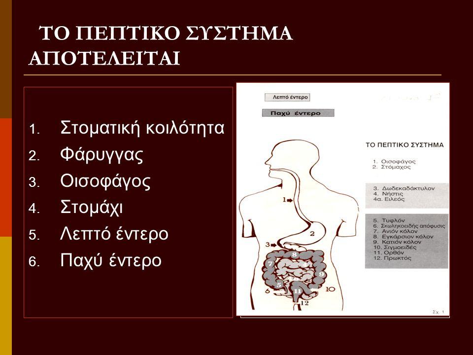 ΡΙΝΟΓΑΣΤΡΙΚΗ ΔΙΑΣΩΛΗΝΩΣΗ Είναι η εισαγωγή καθετήρα από τη μύτη στο στομάχι του αρρώστου ή και η προώθησή του προς το έντερο (γαστρεντερική διασωλήνωση)