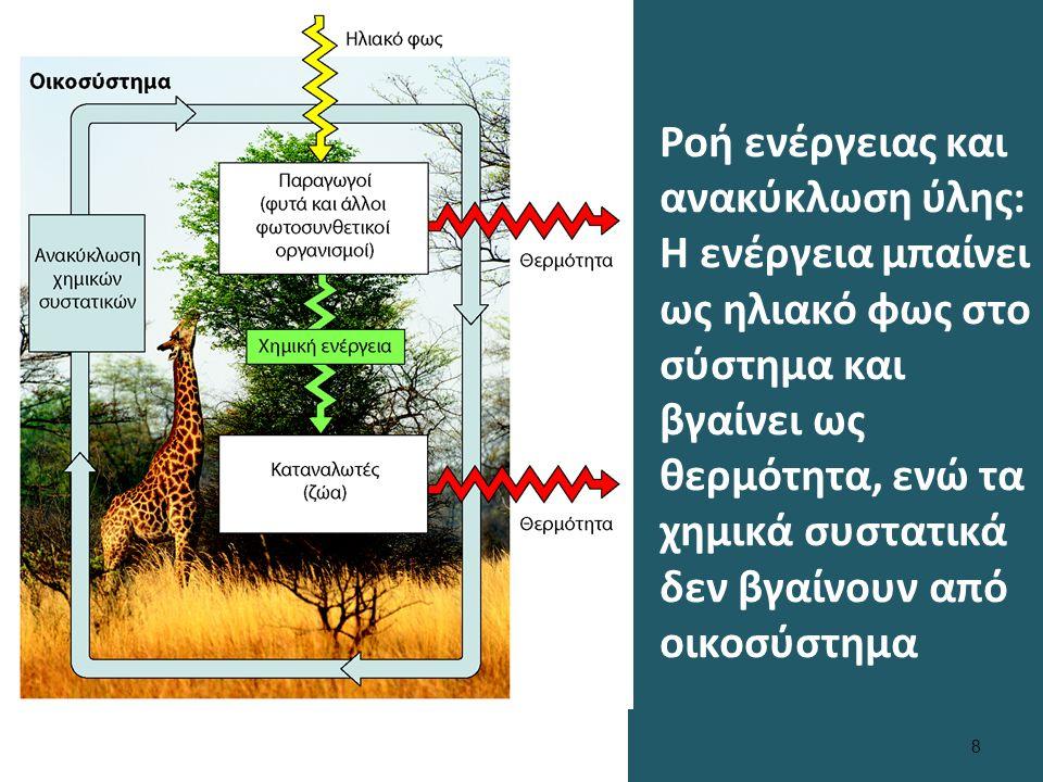 Κανόνας Σε όλα τα επίπεδα βιολογικής οργάνωσης υπάρχει συσχέτιση δομής και λειτουργίας.