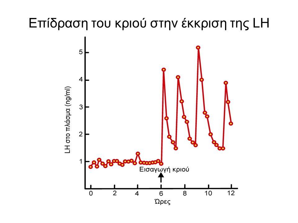 Οιστρικός κύκλος ☻ Ορισμός : το διάστημα κατά το οποίο επαναλαμβάνεται η κυκλική λειτουργία των ωοθηκών ☻ Φάσεις (α' τρόπος) : (α) ωοθυλακίου → ανάπτυξη ωοθυλακίων έως το Γρααφιανό ωοθυλάκιο με κυρίαρχη ορμόνη την οιστραδιόλη (β) ωχρού σωματίου → σχηματισμός ωχρού σωματίου που εκφυλίζεται αν δε λάβει χώρα γονιμοποίηση, κυρίαρχη ορμόνη η PG (γ) σημείο διαχωρισμού → ωοθυλακιορρηξία ☻ Φάσεις (β' τρόπος) : Οίστρος → συμπτώματα οίστρου Μέτοιστρος → ωοθυλακιορρηξία, σχηματισμός ωχρού σωματίου Δίοιστρος → ωχρό σωμάτιο σε πλήρη λειτουργία Πρόοιστρος → ταχεία ανάπτυξη ωοθυλακίων