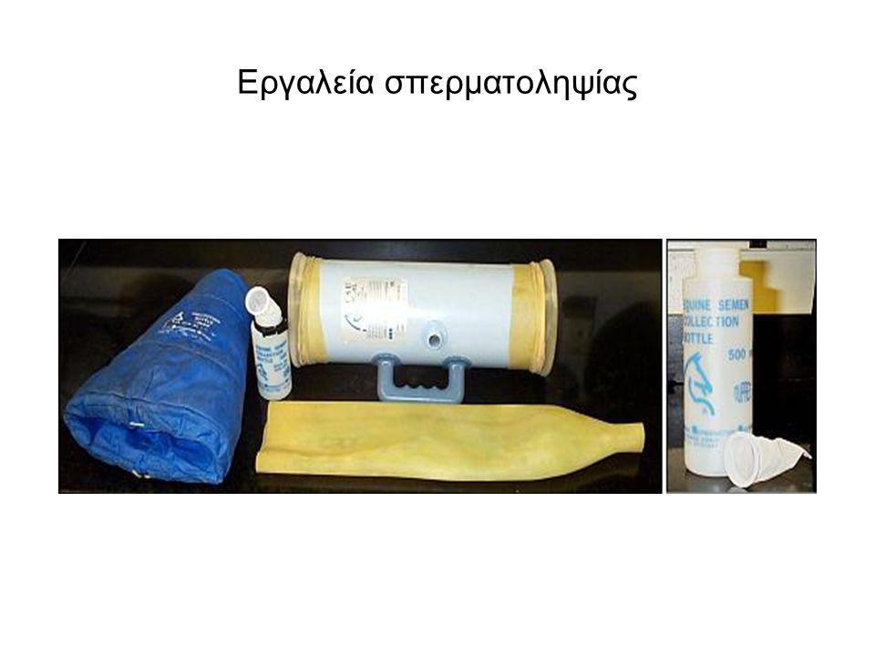 Εργαλεία σπερματοληψίας