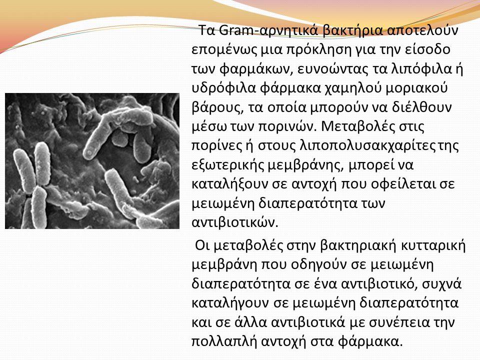 Τα Gram-αρνητικά βακτήρια αποτελούν επομένως μια πρόκληση για την είσοδο των φαρμάκων, ευνοώντας τα λιπόφιλα ή υδρόφιλα φάρμακα χαμηλού μοριακού βάρου