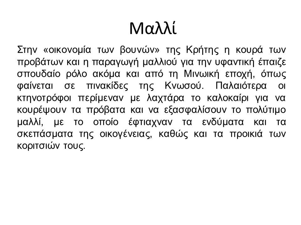 Μαλλί Στην «οικονομία των βουνών» της Κρήτης η κουρά των προβάτων και η παραγωγή μαλλιού για την υφαντική έπαιζε σπουδαίο ρόλο ακόμα και από τη Μινωική εποχή, όπως φαίνεται σε πινακίδες της Κνωσού.