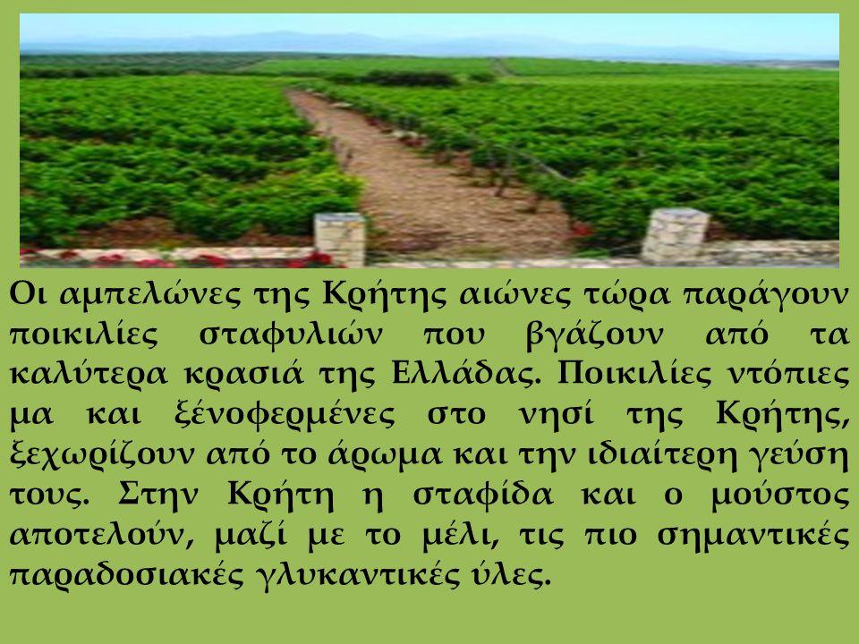 Οι αμπελώνες της Κρήτης αιώνες τώρα παράγουν ποικιλίες σταφυλιών που βγάζουν από τα καλύτερα κρασιά της Ελλάδας. Ποικιλίες ντόπιες μα και ξένοφερμένες