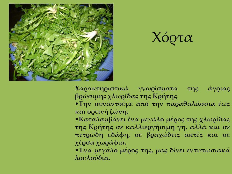 Χόρτα Χαρακτηριστικά γνωρίσματα της άγριας βρώσιμης χλωρίδας της Κρήτης Την συναντούμε από την παραθαλάσσια έως και ορεινή ζώνη. Καταλαμβάνει ένα μεγά
