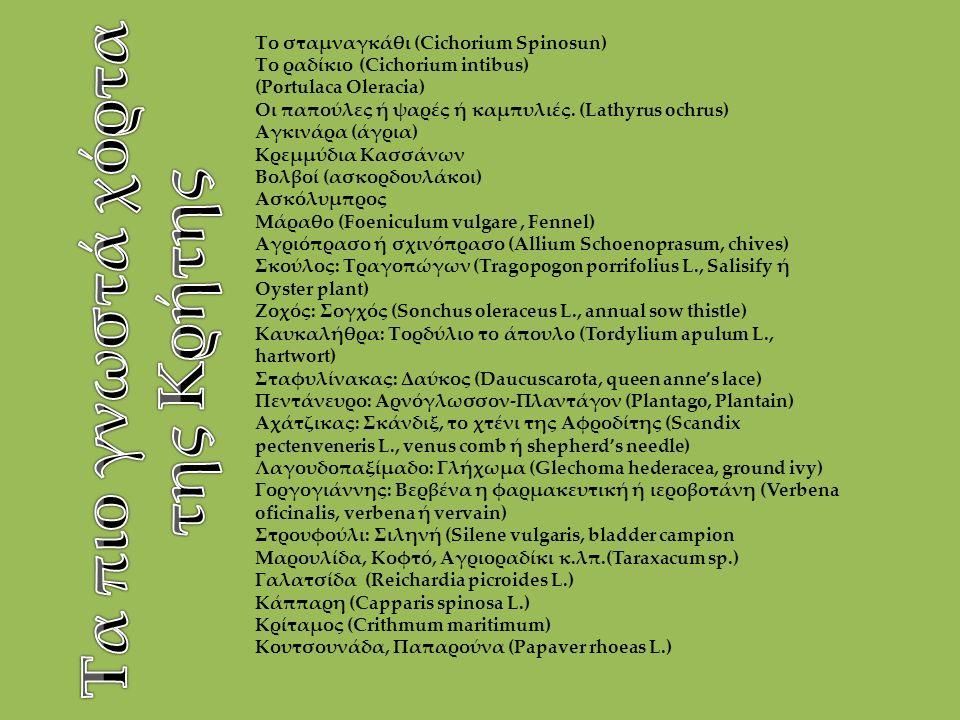 Το σταμναγκάθι (Cichοrium Spinosun) Το ραδίκιο (Cichorium intibus) (Portulaca Oleracia) Οι παπούλες ή ψαρές ή καμπυλιές. (Lathyrus ochrus) Αγκινάρα (ά