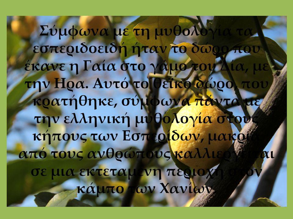 Σύμφωνα με τη μυθολογία τα εσπεριδοειδή ήταν το δώρο που έκανε η Γαία στο γάμο του Δία, με την Ηρα. Αυτό το θεϊκό δώρο, που κρατήθηκε, σύμφωνα πάντα μ