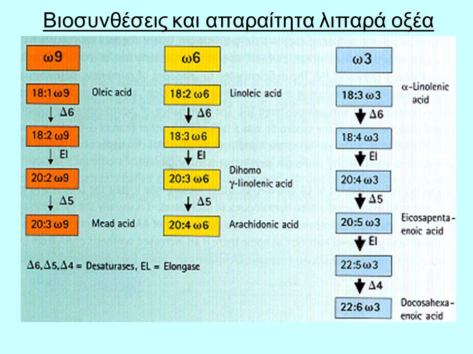 Βιοσυνθέσεις και απαραίτητα λιπαρά οξέα