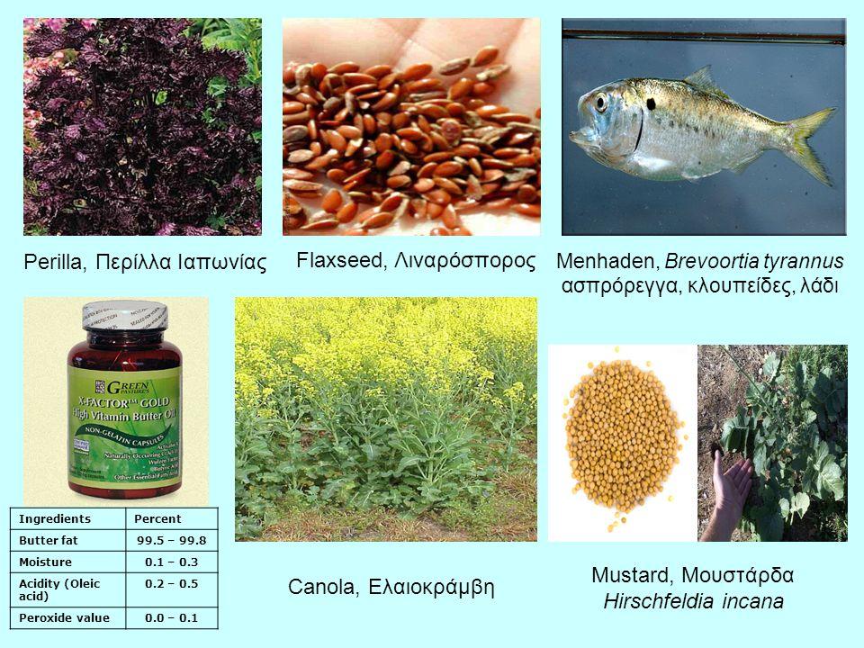 Perilla, Περίλλα Ιαπωνίας Flaxseed, Λιναρόσπορος Menhaden, Brevoortia tyrannus ασπρόρεγγα, κλουπείδες, λάδι IngredientsPercent Butter fat99.5 – 99.8 Moisture0.1 – 0.3 Acidity (Oleic acid) 0.2 – 0.5 Peroxide value0.0 – 0.1 Canola, Ελαιοκράμβη Mustard, Μουστάρδα Hirschfeldia incana