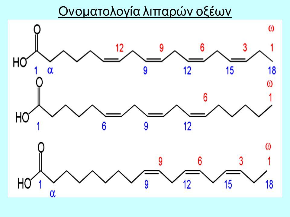 Ονοματολογία λιπαρών οξέων