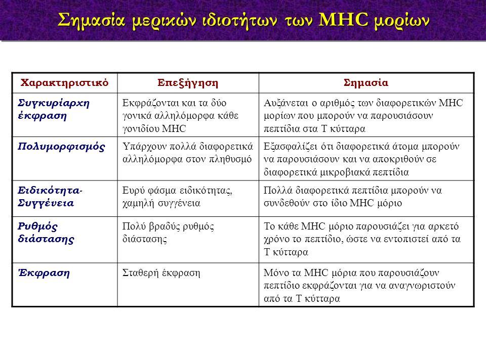 ΧαρακτηριστικόΕπεξήγησηΣημασία Συγκυρίαρχη έκφραση Εκφράζονται και τα δύο γονικά αλληλόμορφα κάθε γονιδίου MHC Αυξάνεται ο αριθμός των διαφορετικών MH