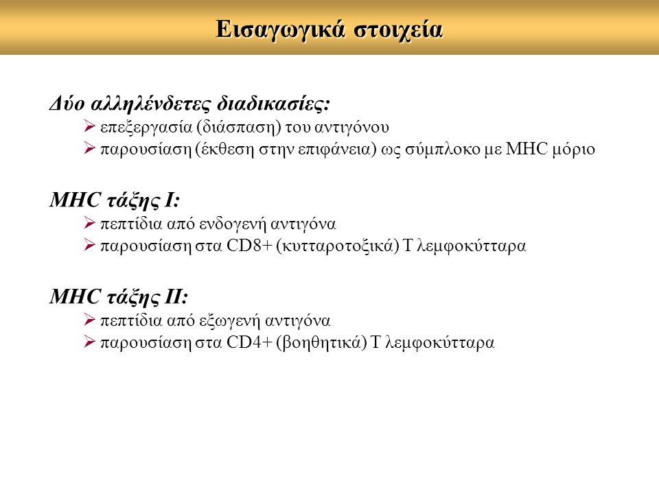 Εισαγωγικά στοιχεία Δύο αλληλένδετες διαδικασίες:  επεξεργασία (διάσπαση) του αντιγόνου  παρουσίαση (έκθεση στην επιφάνεια) ως σύμπλοκο με MHC μόριο