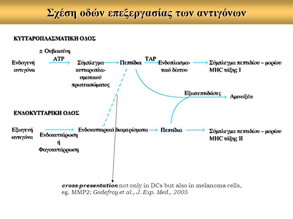 Σχέση οδών επεξεργασίας των αντιγόνων cross-presentation not only in DCs but also in melanoma cells, eg. MMP2; Godefroy et al., J. Exp. Med., 2005
