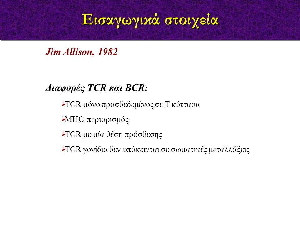 Jim Allison, 1982 Διαφορές TCR και BCR:  ΤCR μόνο προσδεδεμένος σε Τ κύτταρα  MHC-περιορισμός  TCR με μία θέση πρόσδεσης  TCR γονίδια δεν υπόκειντ