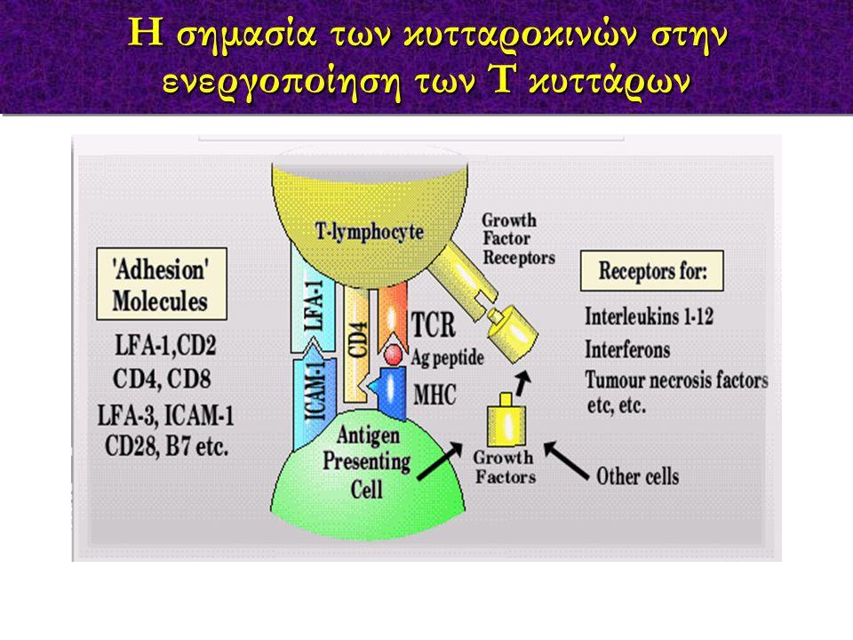 Η σημασία των κυτταροκινών στην ενεργοποίηση των Τ κυττάρων