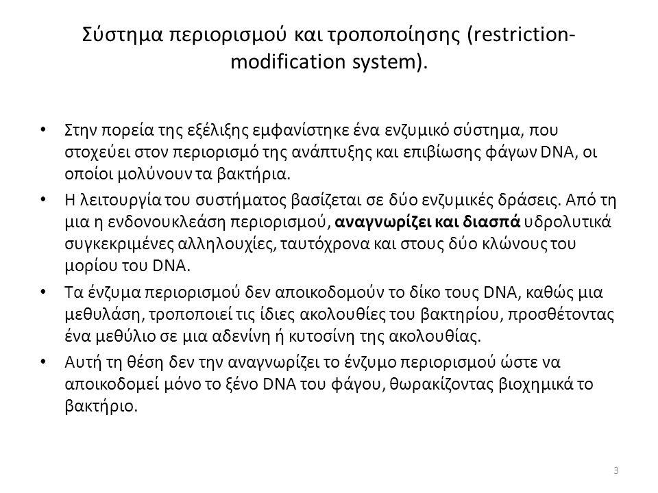 Σύστημα περιορισμού και τροποποίησης (restriction- modification system).