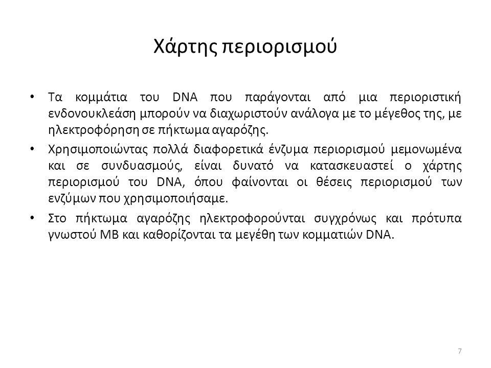 Χάρτης περιορισμού Tα κομμάτια του DNA που παράγονται από μια περιοριστική ενδονουκλεάση μπορούν να διαχωριστούν ανάλογα με το μέγεθος της, με ηλεκτροφόρηση σε πήκτωμα αγαρόζης.