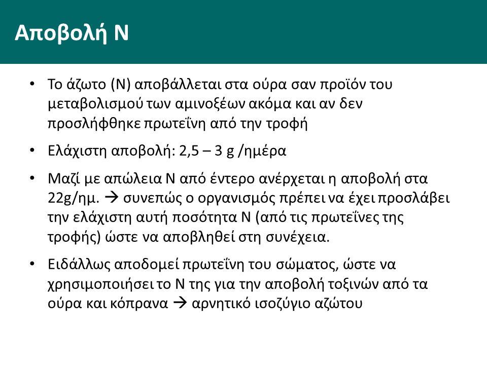 Αποβολή Ν Το άζωτο (Ν) αποβάλλεται στα ούρα σαν προϊόν του μεταβολισμού των αμινοξέων ακόμα και αν δεν προσλήφθηκε πρωτεΐνη από την τροφή Ελάχιστη αποβολή: 2,5 – 3 g /ημέρα Μαζί με απώλεια Ν από έντερο ανέρχεται η αποβολή στα 22g/ημ.