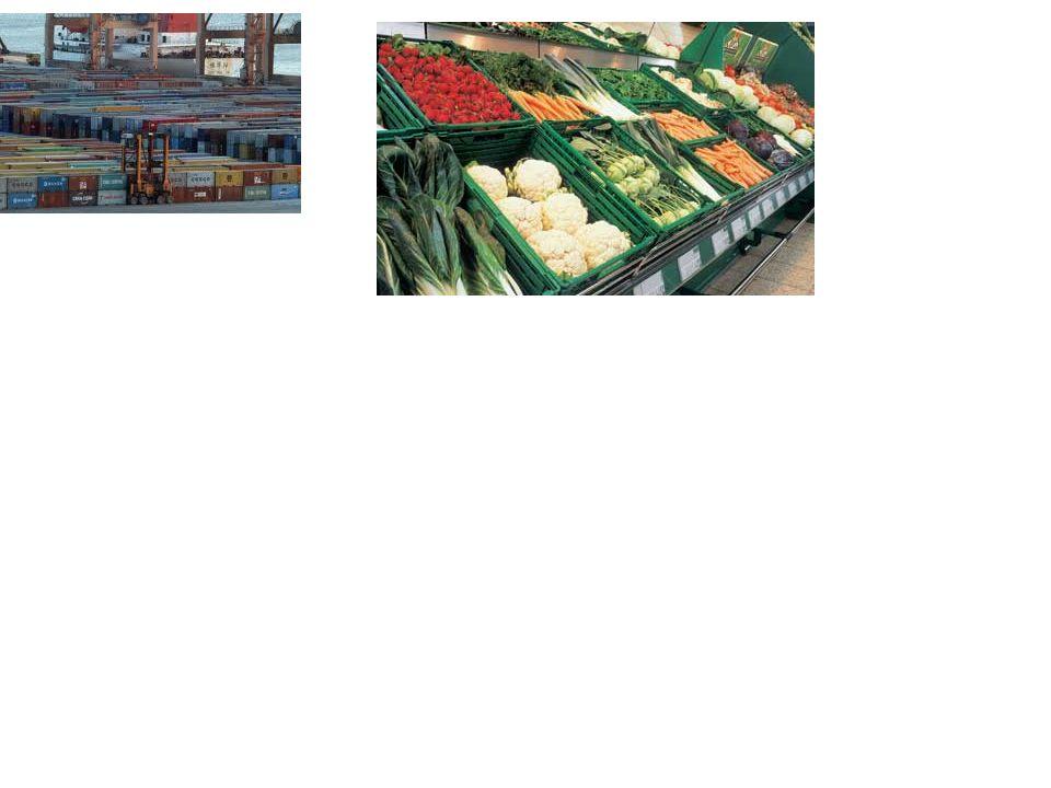 ΣΚΟΠΟΙ ΕΜΠΟΡΙΑΣ ΤΩΝ ΠΑΡΑΓΩΓΩΝ Βέβαιη διάθεση των αγροτικών προϊόντων.