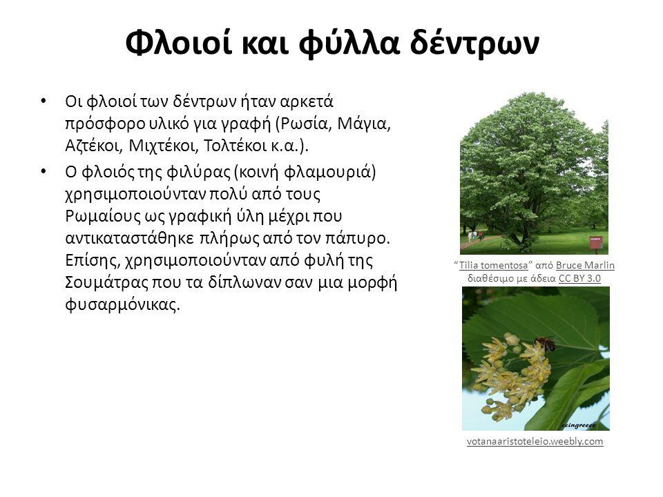 Φλοιοί και φύλλα δέντρων Οι φλοιοί των δέντρων ήταν αρκετά πρόσφορο υλικό για γραφή (Ρωσία, Μάγια, Αζτέκοι, Μιχτέκοι, Τολτέκοι κ.α.).