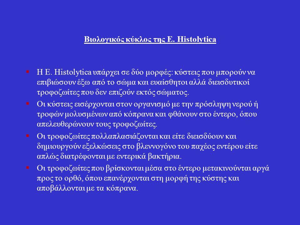 Βιολογικός κύκλος της Ε. Histolytica  Η Ε.