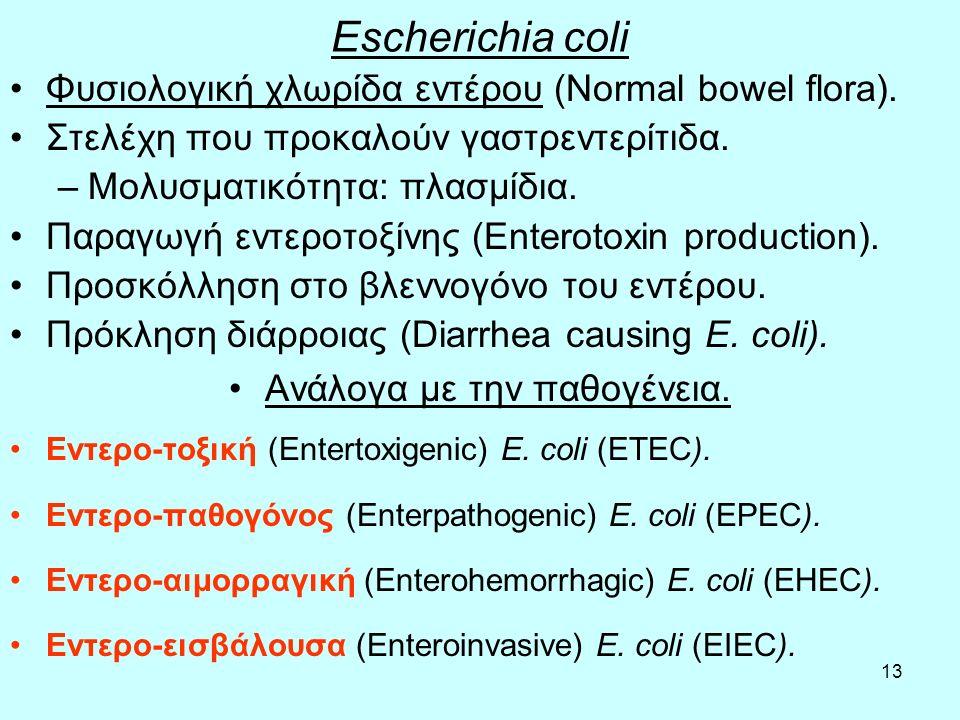 13 Escherichia coli Φυσιολογική χλωρίδα εντέρου (Normal bowel flora). Στελέχη που προκαλούν γαστρεντερίτιδα. –Μολυσματικότητα: πλασμίδια. Παραγωγή εντ
