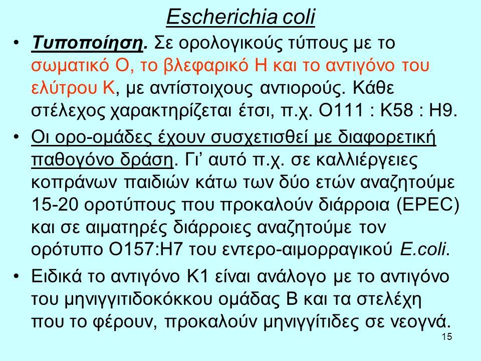 15 Escherichia coli Τυποποίηση. Σε ορολογικούς τύπους με το σωματικό Ο, το βλεφαρικό Η και το αντιγόνο του ελύτρου Κ, με αντίστοιχους αντιορούς. Κάθε