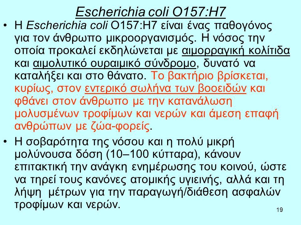 19 Escherichia coli O157:H7 Η Escherichia coli O157:H7 είναι ένας παθογόνος για τον άνθρωπο μικροοργανισμός. Η νόσος την οποία προκαλεί εκδηλώνεται με