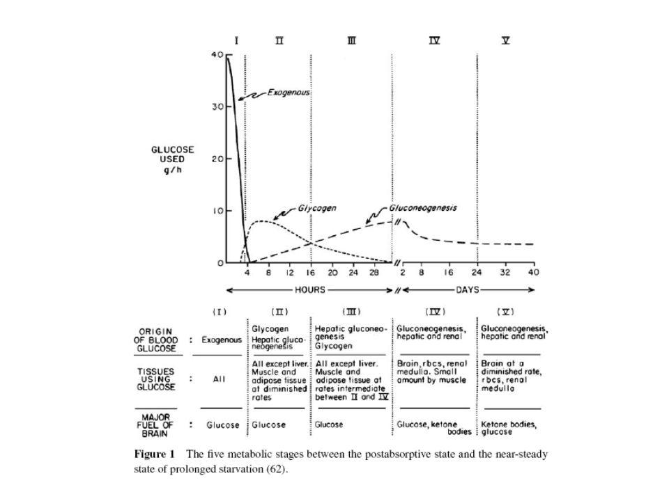 Ινσουλίνωμα Επίπτωση: 0.4/100000.έτος Μέση ηλικία διάγνωσης 50 έτη Συμπτώματα: Νευρογλυκοπενικά και συμπαθητικά.