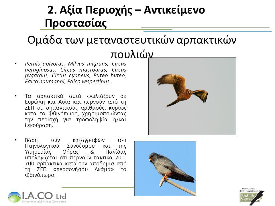 Ομάδα των μεταναστευτικών αρπακτικών πουλιών Pernis apivorus, Milvus migrans, Circus aeruginosus, Circus macrourus, Circus pygargus, Circus cyaneus, Buteo buteo, Falco naumanni, Falco vespertinus.