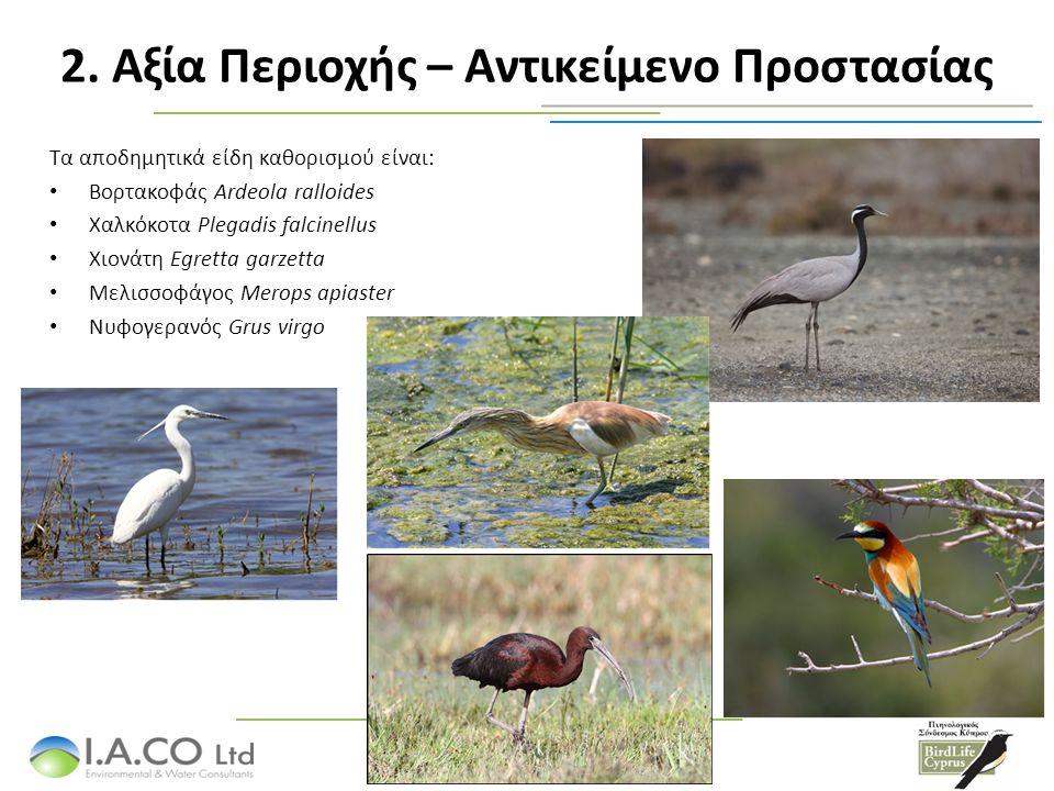 Τα αποδημητικά είδη καθορισμού είναι: Βορτακοφάς Ardeola ralloides Χαλκόκοτα Plegadis falcinellus Χιονάτη Egretta garzetta Μελισσοφάγος Merops apiaster Νυφογερανός Grus virgo 2.