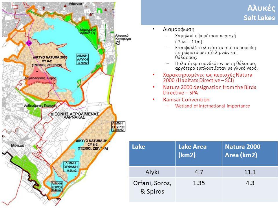 LakeLake Area (km2) Natura 2000 Area (km2) Alyki4.711.1 Orfani, Soros, & Spiros 1.354.3 Διαμόρφωση – Χαμηλού υψομέτρου περιοχή (-3 ως +11m) – Εξασφαλί