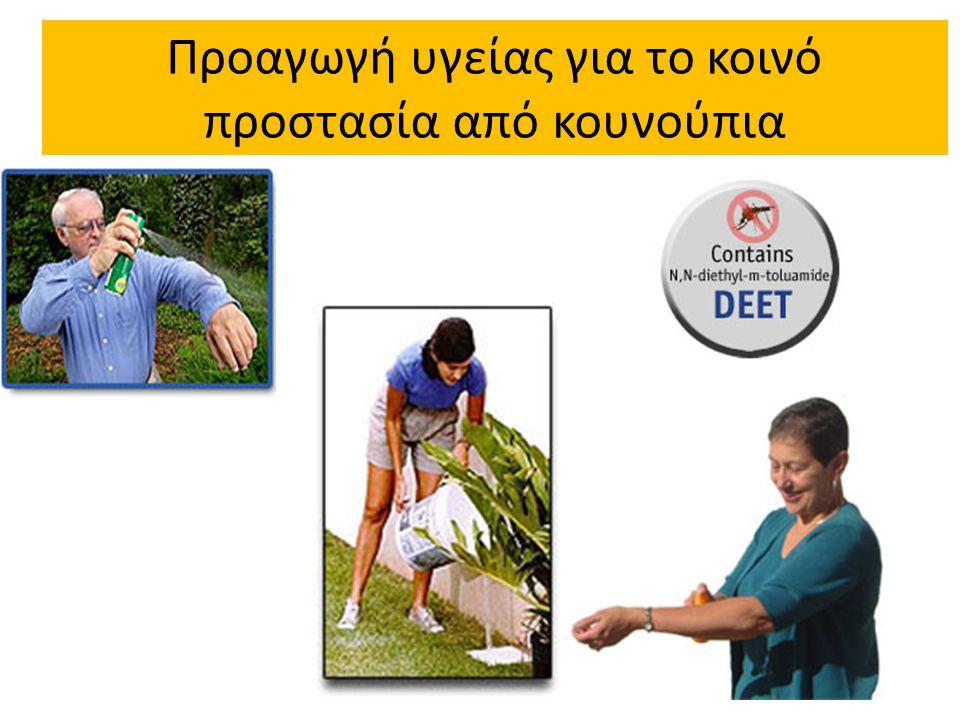 Προαγωγή υγείας για το κοινό προστασία από κουνούπια 32