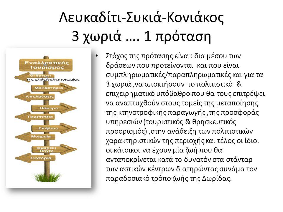 3 χωριά….1 ενότητα….1 σκοπός CLLD Project Τελικός σκοπός των παρεμβάσεων δημόσιου χαρακτήρα που προτείνουμε είναι να παράσχουμε στους κατοίκους και επισκέπτες της περιοχής ένα «μπουκέτο» αξιοθέατων και δραστηριοτήτων αθλητικού και πολιτιστικού χαρακτήρα που θα βάλει την περιοχή στον χάρτη σαν μία αξιόλογη πρόταση διακοπών (όσον αφορά στον τουριστικό τομέα ) και σαν μια περιοχή στην οποία αξίζει να διαβιώνεις και να επιχειρείς.