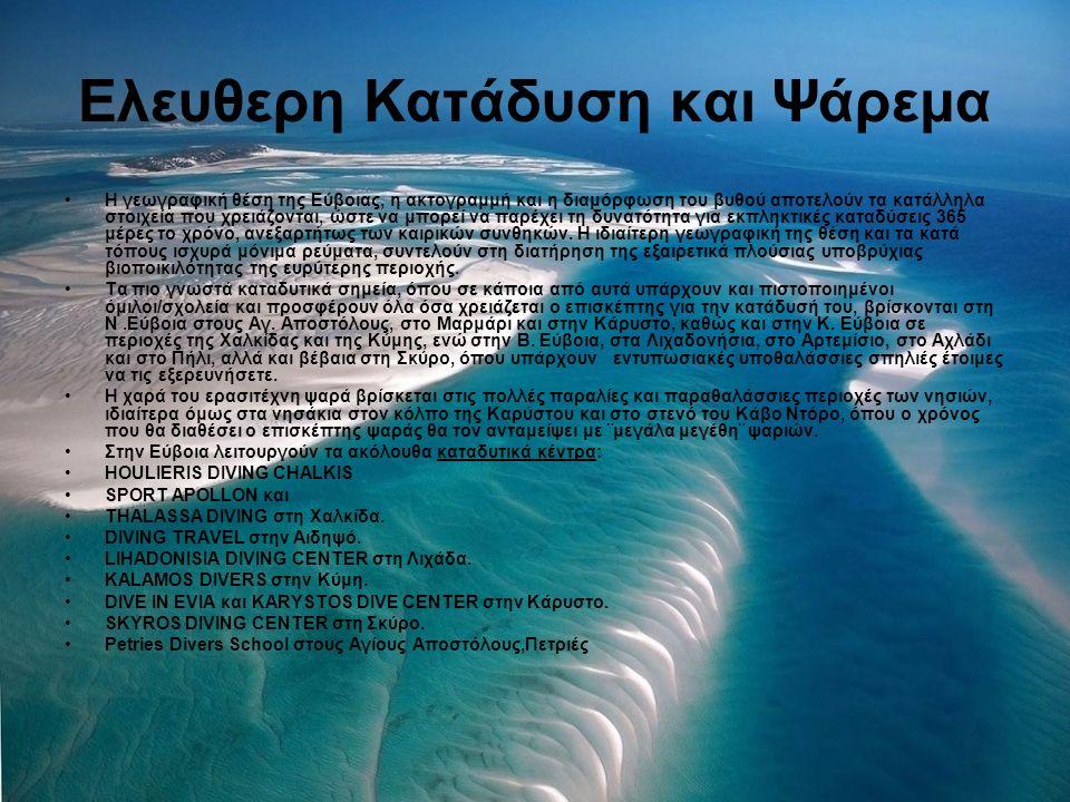 Ελευθερη Κατάδυση και Ψάρεμα Η γεωγραφική θέση της Εύβοιας, η ακτογραμμή και η διαμόρφωση του βυθού αποτελούν τα κατάλληλα στοιχεία που χρειάζονται, ώ
