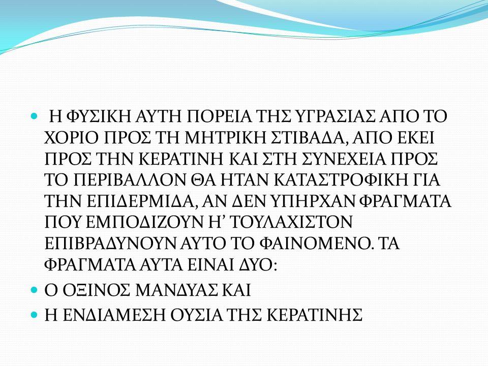 Η ΦΥΣΙΚΗ ΑΥΤΗ ΠΟΡΕΙΑ ΤΗΣ ΥΓΡΑΣΙΑΣ ΑΠΟ ΤΟ ΧΟΡΙΟ ΠΡΟΣ ΤΗ ΜΗΤΡΙΚΗ ΣΤΙΒΑΔΑ, ΑΠΟ ΕΚΕΙ ΠΡΟΣ ΤΗΝ ΚΕΡΑΤΙΝΗ ΚΑΙ ΣΤΗ ΣΥΝΕΧΕΙΑ ΠΡΟΣ ΤΟ ΠΕΡΙΒΑΛΛΟΝ ΘΑ ΗΤΑΝ ΚΑΤΑΣΤΡΟΦΙΚΗ ΓΙΑ ΤΗΝ ΕΠΙΔΕΡΜΙΔΑ, ΑΝ ΔΕΝ ΥΠΗΡΧΑΝ ΦΡΑΓΜΑΤΑ ΠΟΥ ΕΜΠΟΔΙΖΟΥΝ Η' ΤΟΥΛΑΧΙΣΤΟΝ ΕΠΙΒΡΑΔΥΝΟΥΝ ΑΥΤΟ ΤΟ ΦΑΙΝΟΜΕΝΟ.
