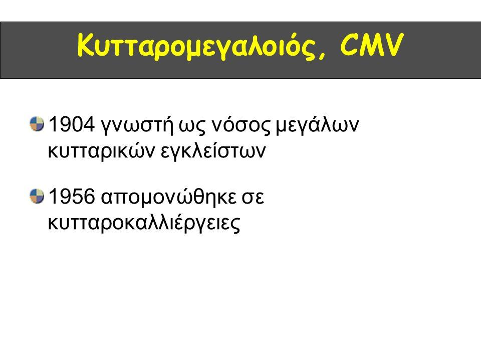 Κυτταρομεγαλοιός, CMV 1904 γνωστή ως νόσος μεγάλων κυτταρικών εγκλείστων 1956 απομονώθηκε σε κυτταροκαλλιέργειες