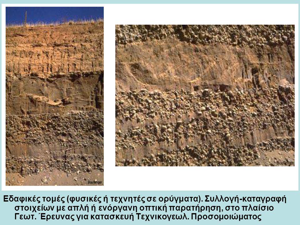 Εδαφικές τομές (φυσικές ή τεχνητές σε ορύγματα).
