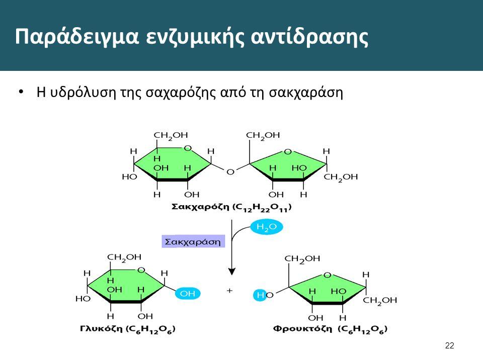 Παράδειγμα ενζυμικής αντίδρασης Η υδρόλυση της σαχαρόζης από τη σακχαράση 22