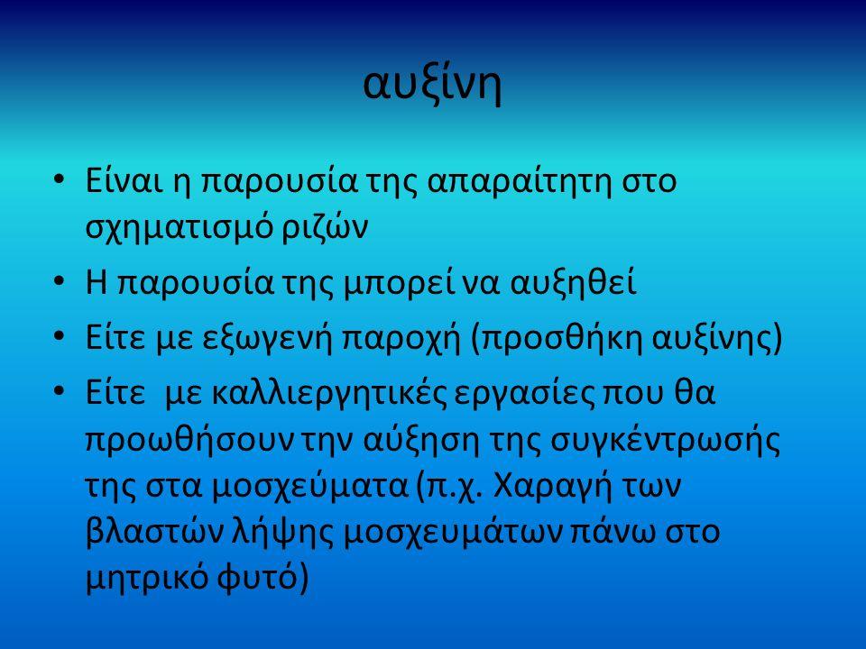 αυξίνη Είναι η παρουσία της απαραίτητη στο σχηματισμό ριζών Η παρουσία της μπορεί να αυξηθεί Είτε με εξωγενή παροχή (προσθήκη αυξίνης) Είτε με καλλιεργητικές εργασίες που θα προωθήσουν την αύξηση της συγκέντρωσής της στα μοσχεύματα (π.χ.