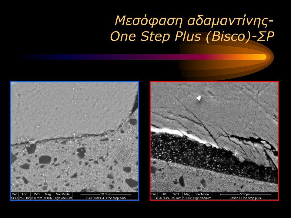 Μεσόφαση αδαμαντίνης- One Step Plus (Bisco)-ΣΡ