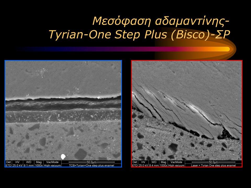 Μεσόφαση αδαμαντίνης- Tyrian-One Step Plus (Bisco)-ΣΡ