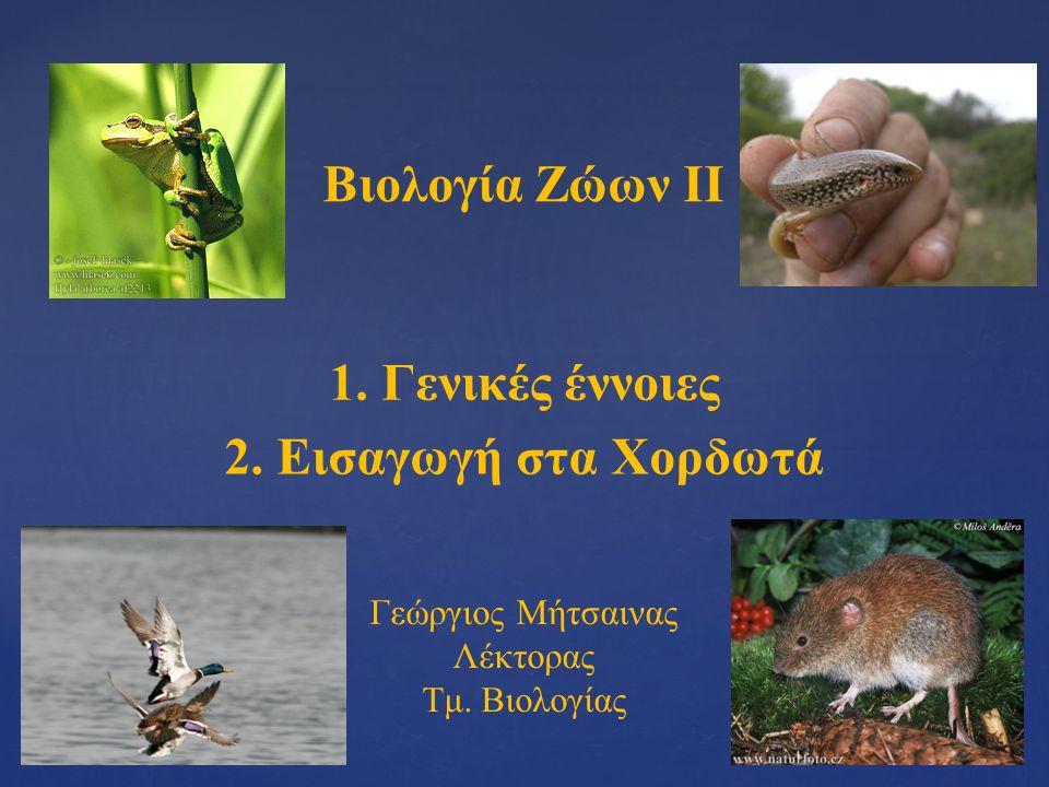 Βιολογία Ζώων ΙΙ 1. Γενικές έννοιες 2. Εισαγωγή στα Χορδωτά Γεώργιος Μήτσαινας Λέκτορας Τμ.