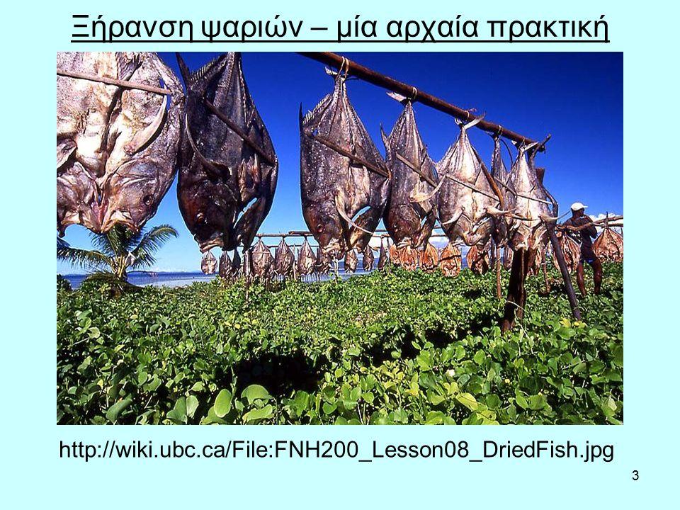 3 Ξήρανση ψαριών – μία αρχαία πρακτική http://wiki.ubc.ca/File:FNH200_Lesson08_DriedFish.jpg